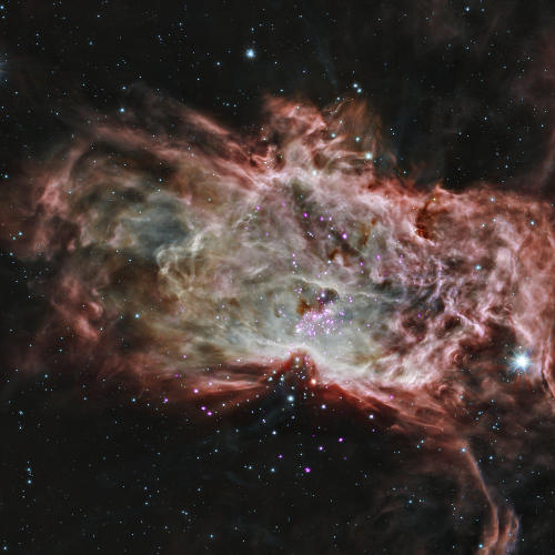 Flame Nebula - NASA